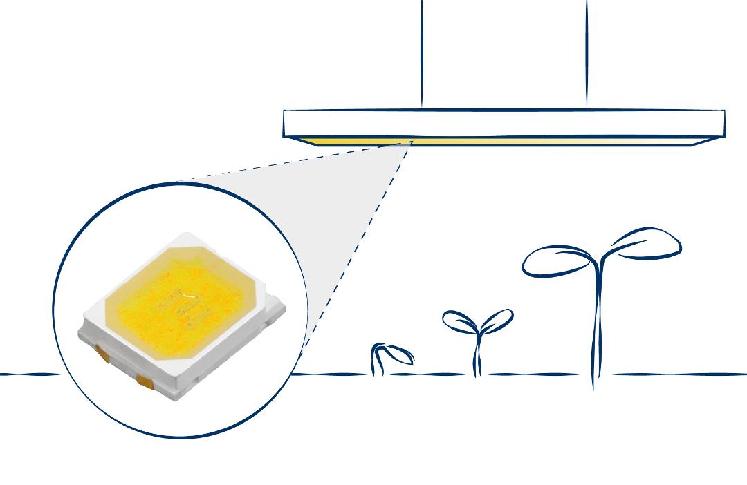 LED soluzioni customizzate per orticoltura